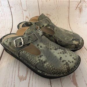 Alegria Paloma Clog Shoes Snake Print ALG-723